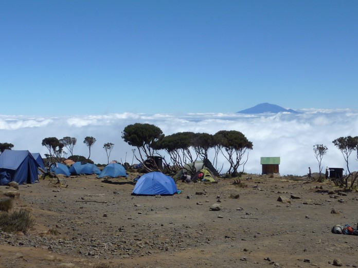 Kilimanjaro (58)