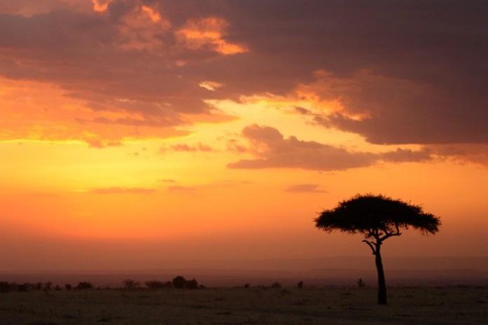 Sunset Serengeti