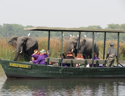 Liwonde National Park, Malawi - Best Destinations for an African Safari