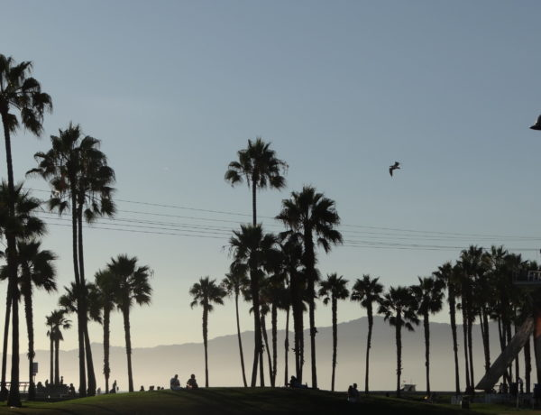 California Road Trip Itinerary - Venice Beach