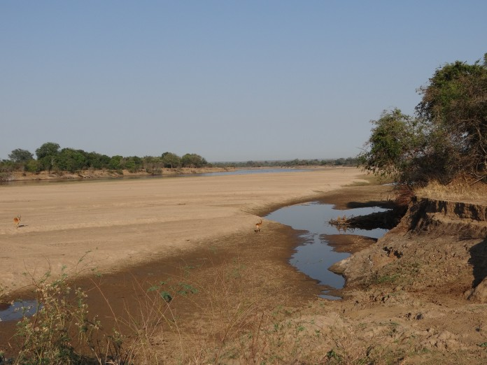 South Luangwa National Park Zambia (16)