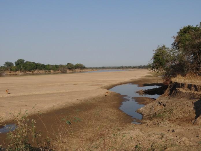 South Luangwa National Park Zambia (16)
