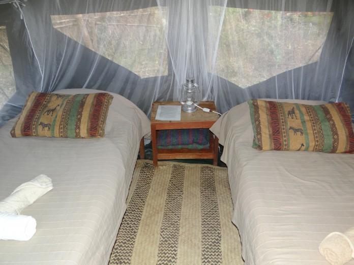 South Luangwa National Park Zambia (2)