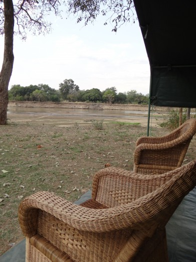 South Luangwa National Park Zambia (3)