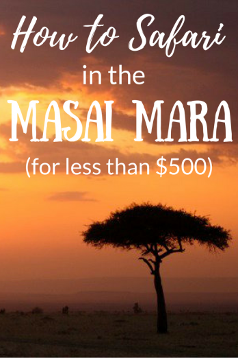 How to plan a trip to the Masai Mara for less than $500.