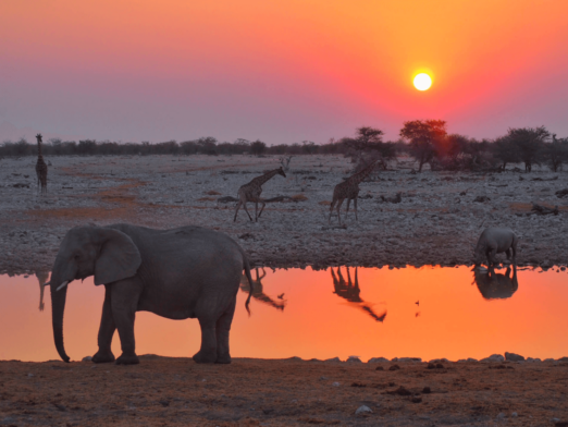 How To Plan Your Dream Trip To Africa (in 18 easy steps)