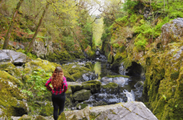 The Fairy Glen Betws-y-Coed