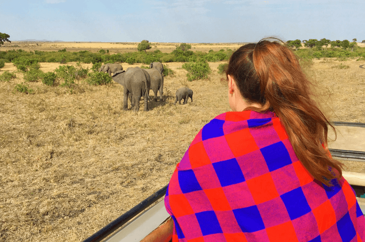 Watching elephants on safari in the Masai Mara.