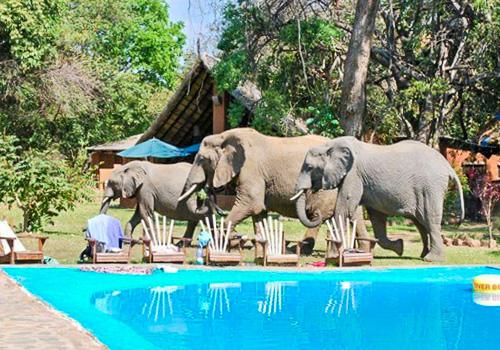 Malawi Zambia Botswana Tour