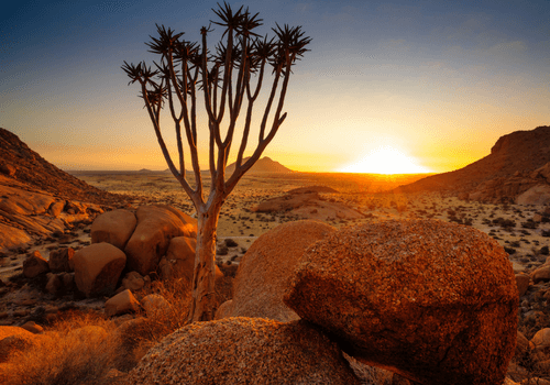 Namibia Small Group Tour