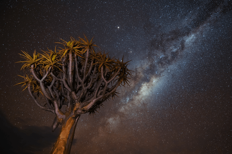 The Milky Way in Namibia