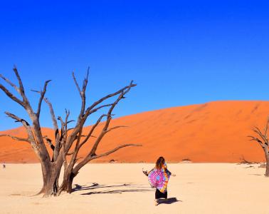 Africa: Independent Travel v's Overland Tour