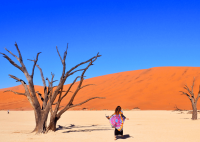 Namibia Feature Image