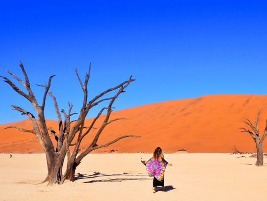 Travelling Africa Independently vs. Taking an Overland Tour