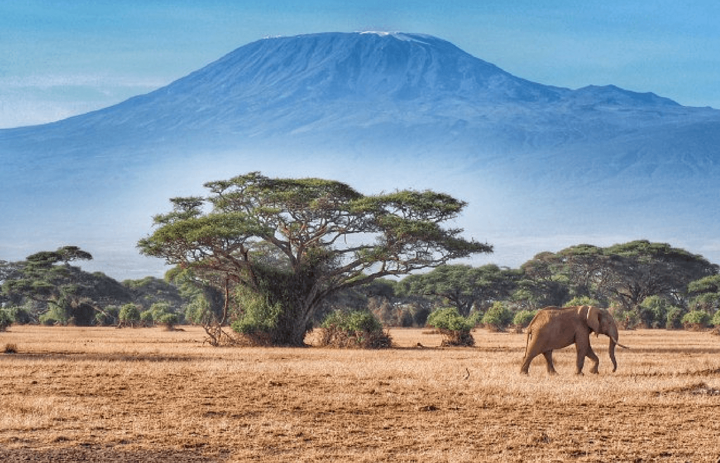 Tipping on Kilimanjaro: Everything You Need to Know