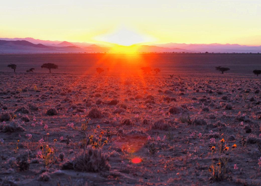 Klein Aus Vista, Namibia