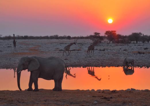 Rock My Namibia Adventure 2