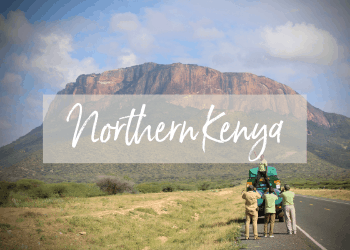 Northern Kenya Tour