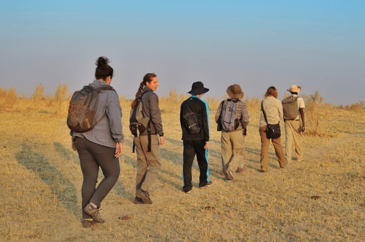 Walking Safari in Botswana - Rock My Adventure Tours