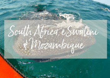 South Africa, eSwatini & Mozambique
