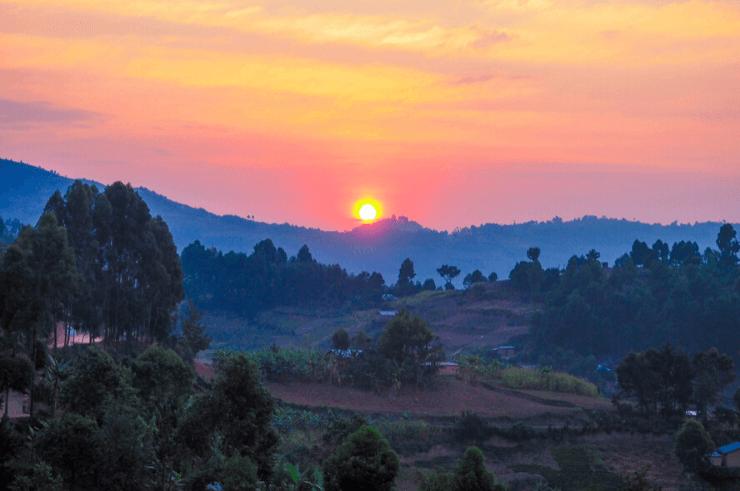 Gorilla Trekking, Uganda & Rwanda