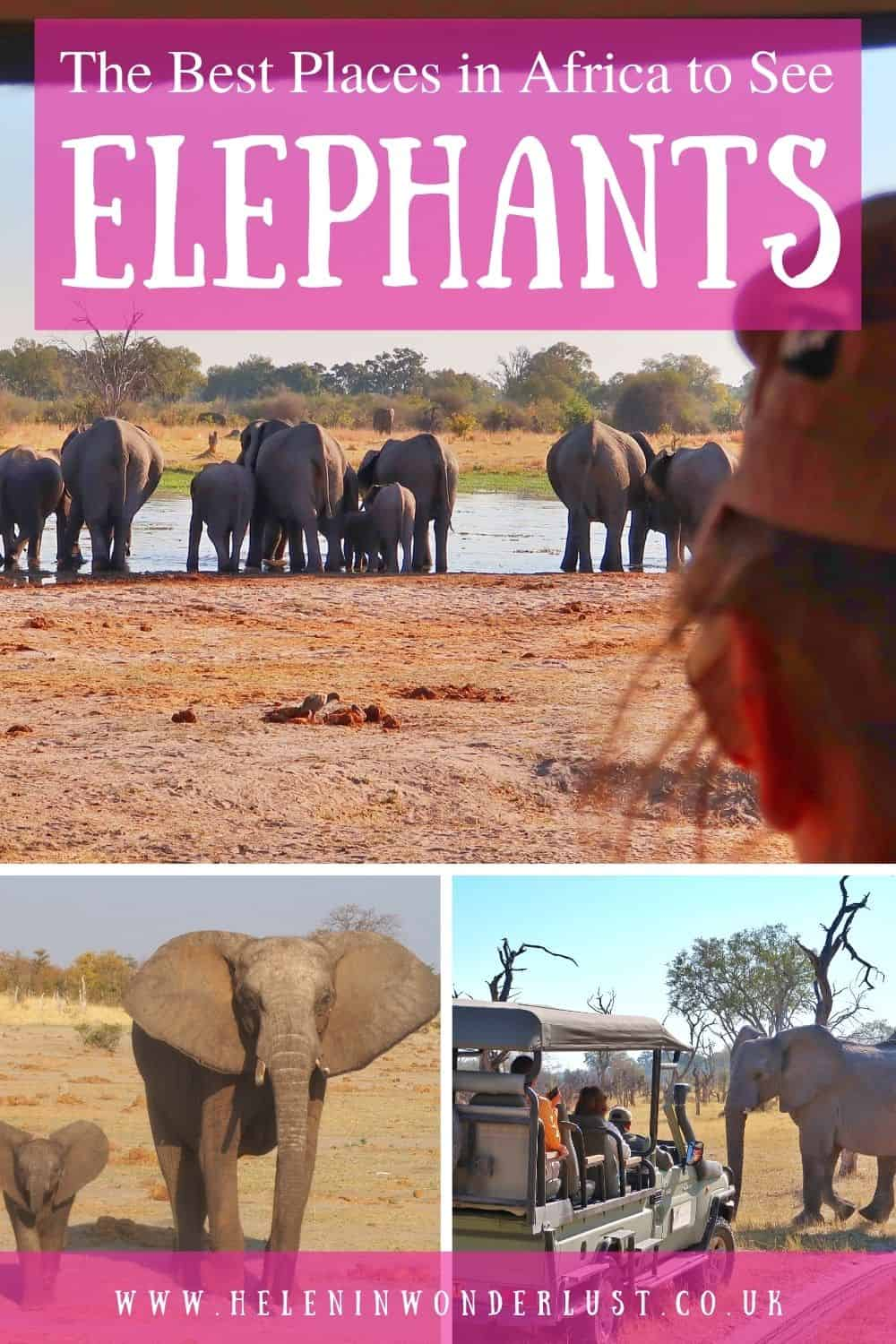 The Best Places in Africa to See Elephants