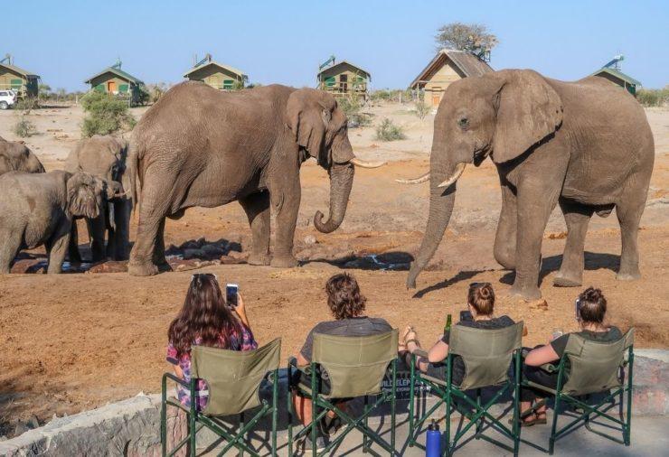 Elephant Sands - Botswana