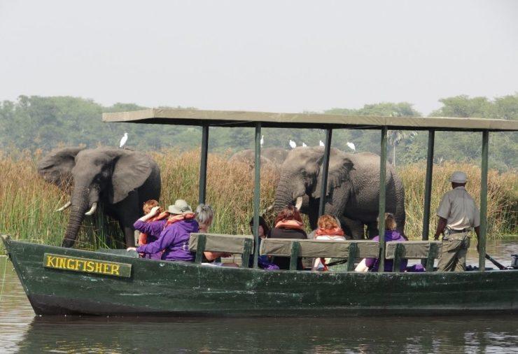 Boat safari in Liwonde National Park, Malawi