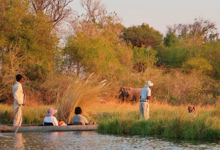Okavango Delta - Botswana