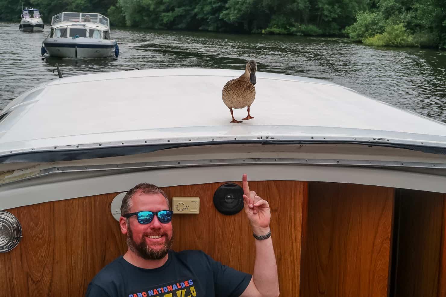 Duck in the Norfolk Broads